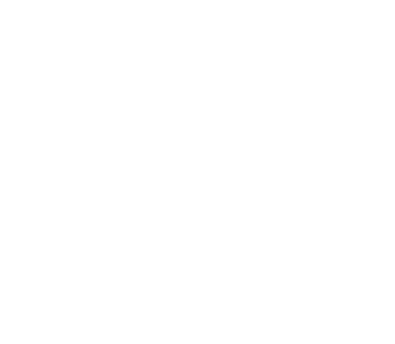 x Arrow right
