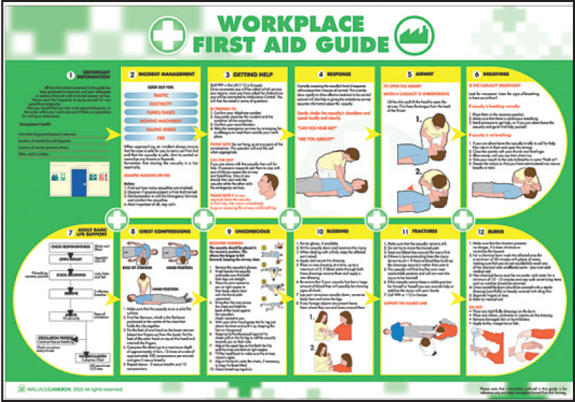 Delicate image with first aid guide printable