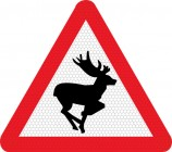 Wild animals on road road sign 551